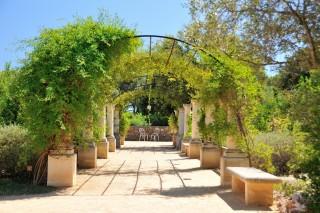 jardin-antique-mediterraneen-balaruc-les-bains-23-1117
