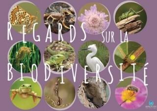 Regards sur la biodiversité
