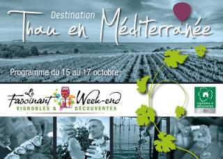 Facsinant week end Thau en Méditerranée