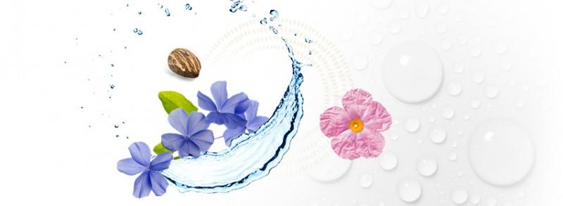 balaruc-les-bains-cosmetique-1-1010