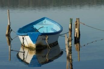 barque-sur-l-etang-de-thau-1403119172-159-951