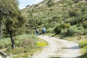 gigean-massif-de-la-gardiole-1511879027-1808-955