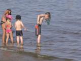 Plages sur la lagune de Thau Balaruc-les-Bains