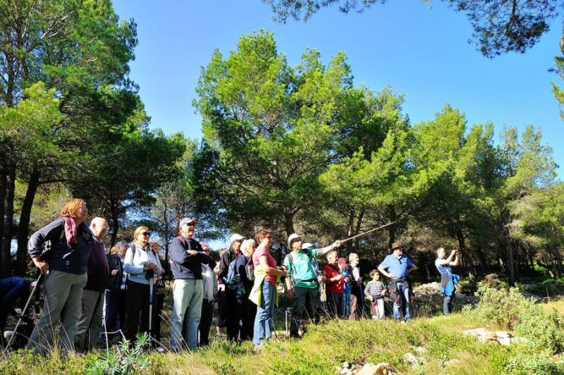 Sortie Nature Activités Pass Loisirs de l'Office de Tourisme de Balaruc les Bains