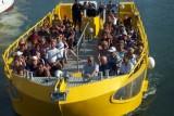Aprés-midi sur Sète Sortie en bateau de l'Office de Tourisme avec Sète Croisières