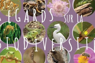 festival biodiversité