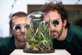 « Expressions végétales » par le duo Labotanique
