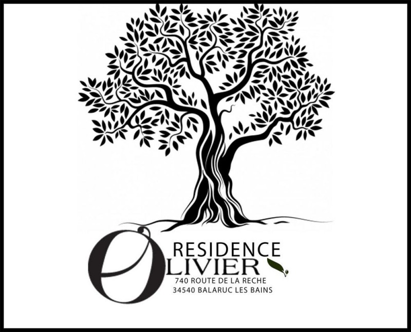 LOCATION BALARUC-LES-BAINS RESIDENCE OLIVIER N°1