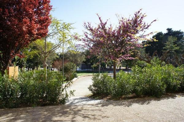 Location Balaruc-les-Bains Mme Niedzelski Résidence Amphitrite N°15